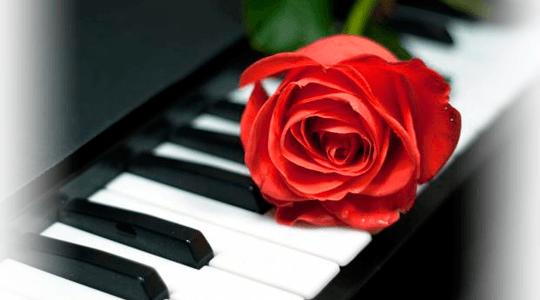 PIANO-BAR2